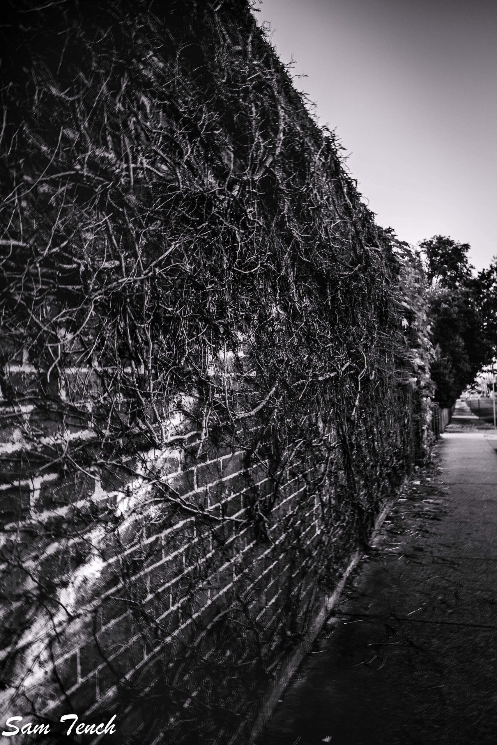Brick walls and mysterious pathways